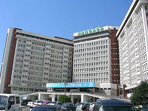 Học bổng đa văn hóa toàn cầu, Seoul National University
