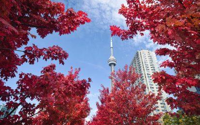 Những khó khăn du học sinh Việt Nam gặp phải khi du học Canada