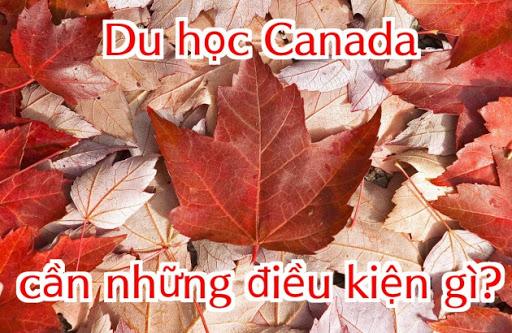 Du học Canada 2020 cần điều kiện gì?
